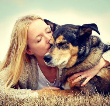Remembering to be Grateful: The Emotional Process of Saying Goodbye to Your Beloved Pet